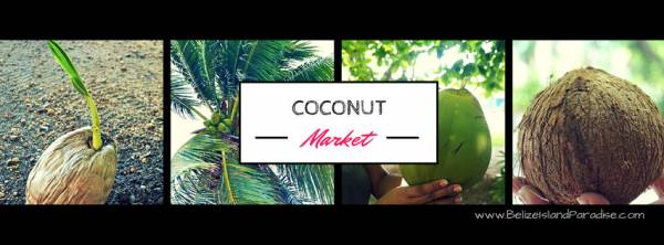 How we use Coconuts everyday!