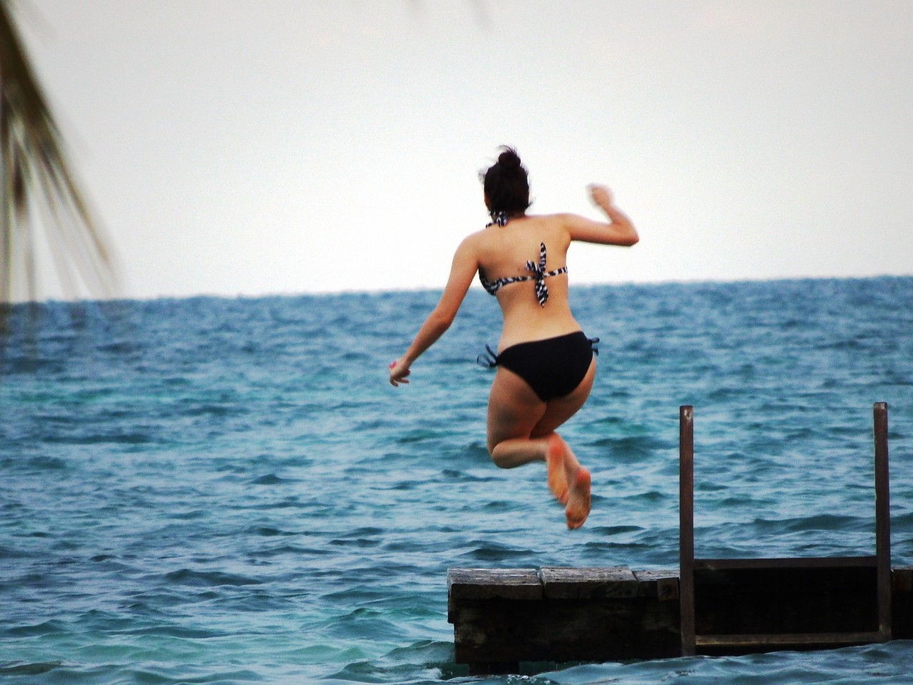 Jump off the dock at St Georges Caye Belize