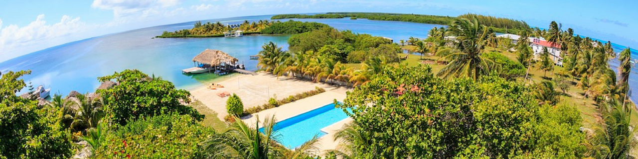 View of St. George's Caye from above the palm trees