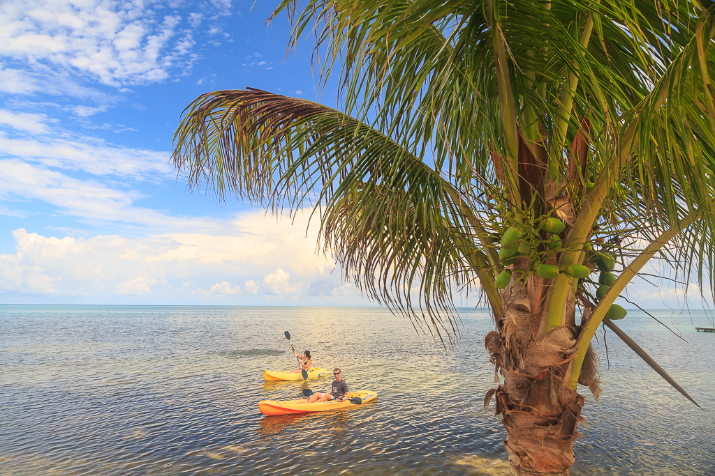 kayak caribbean sea belize